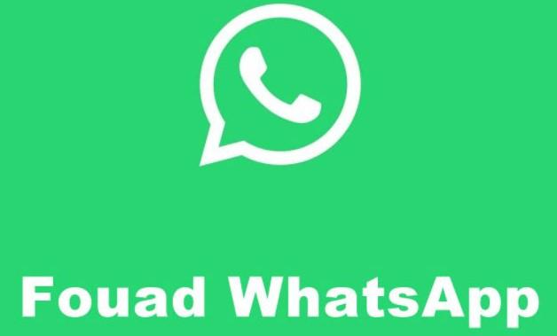 Fouad Whatsapp V8.95 Mods